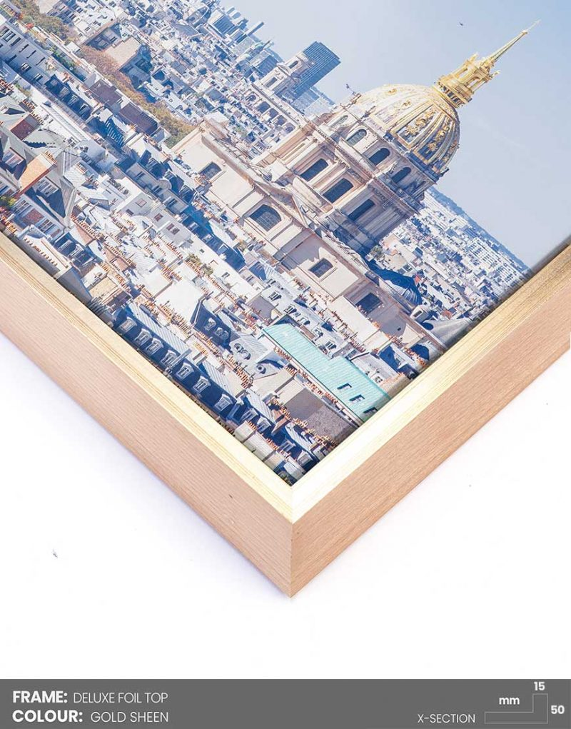 delux-foil-top-gold-sheen-canvas-floating-frame