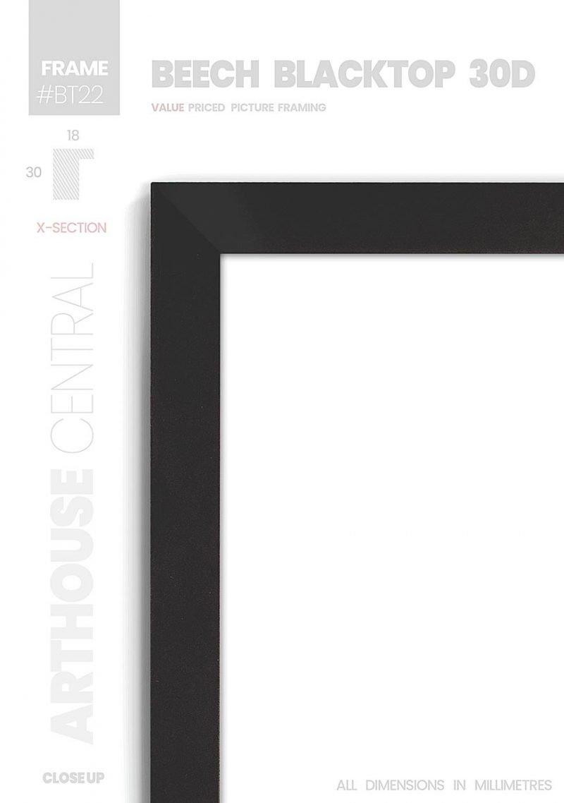 Beech Blacktop 30D - #BT22 - black picture frame - Details View
