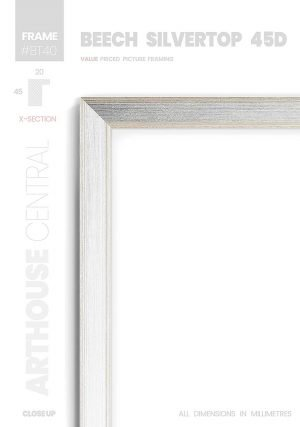 Beech Silvertop 45D - #BT40 - timber picture frame - Details View