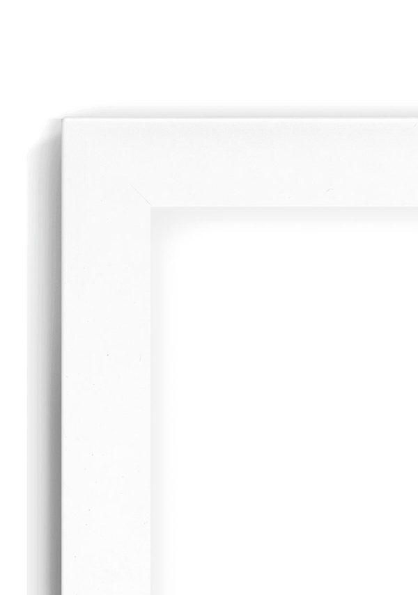 Beech Whitetop 30D - #BT20 - white picture frame - Closeup View