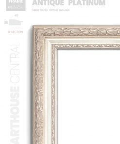 Antique Platinum - #M454 - metallic picture frame - Details View