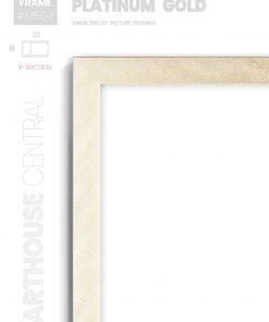 Platinum Gold - #M504 - metallic picture frame - Details View