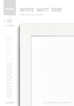 Matt White 2020 - #W620 - white picture frame - Details View