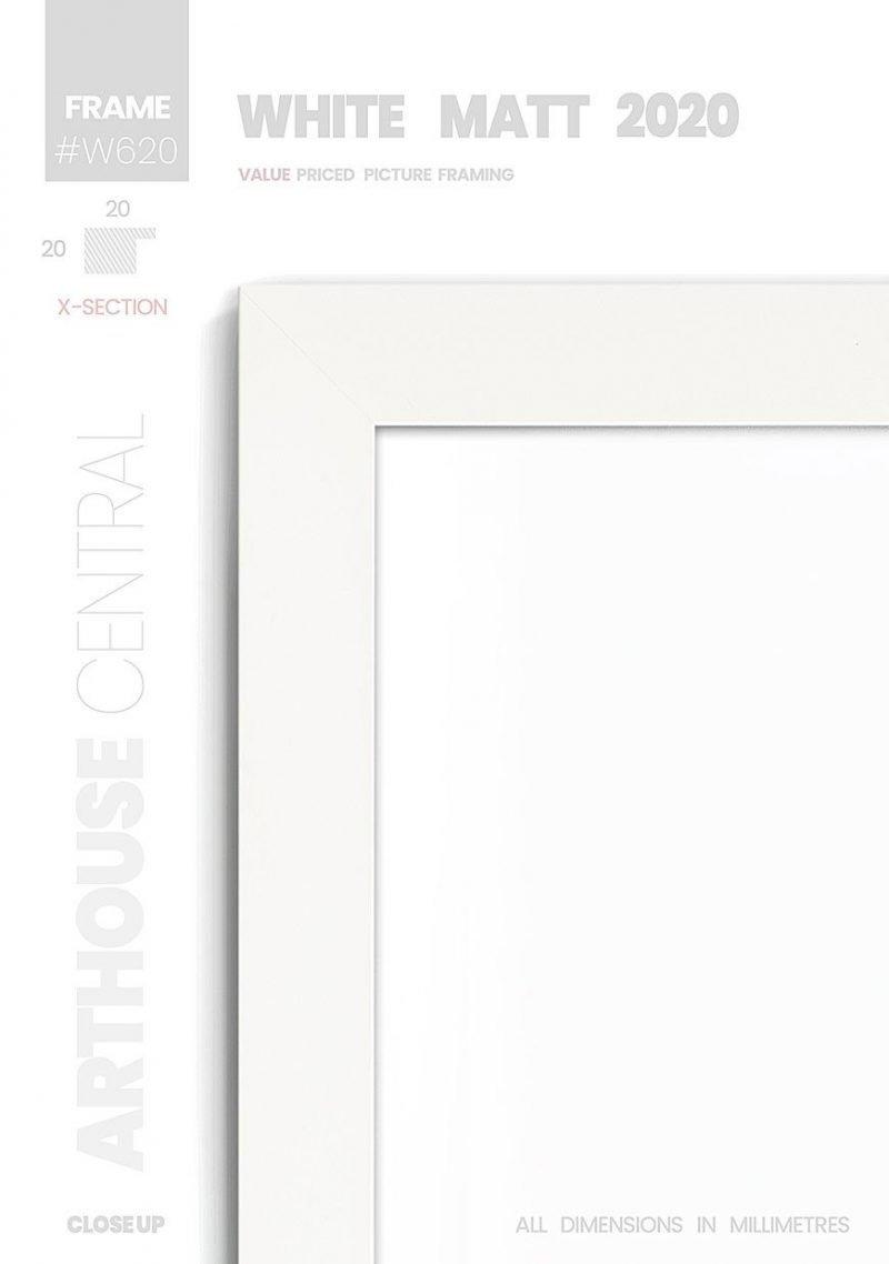 Matt White 2020 - #W620 - white picture frame - Details View